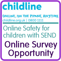 Childline SEND Survey Icon Lge