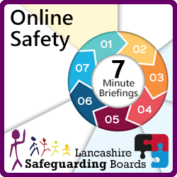 7MB Online Safety Lge Icon