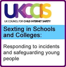 UKCCIS Sexting In Schools Web Icon Lge
