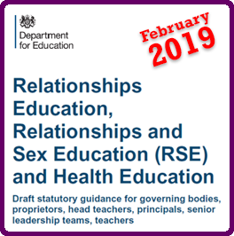DfE RSE Curric Feb 2019 Web Icon Lge